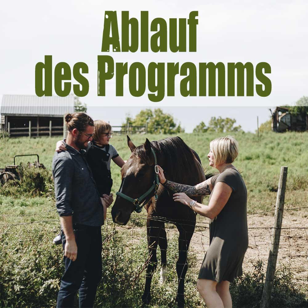 Ablauf Programm Farmstay Kanada
