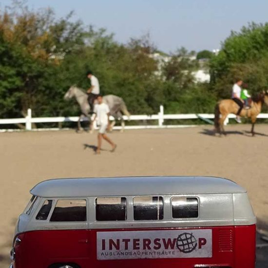 Interswop organisiert Farmstays