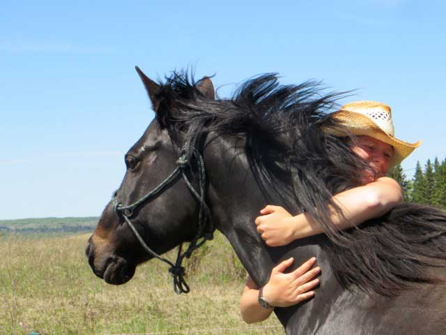 Gentle & Natural Horsemanship