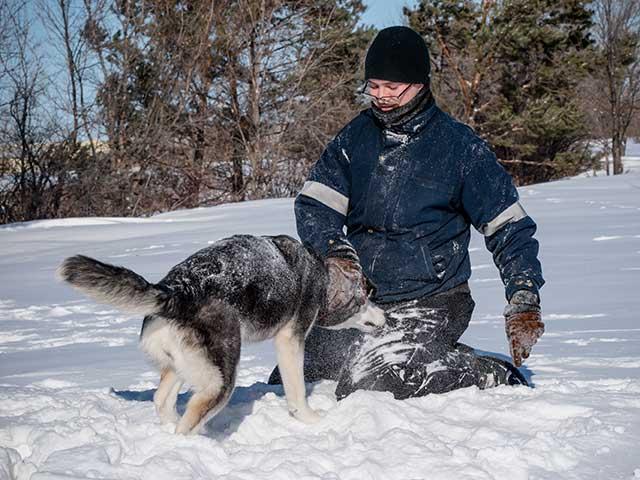 Mit Hund im Schnee spielen